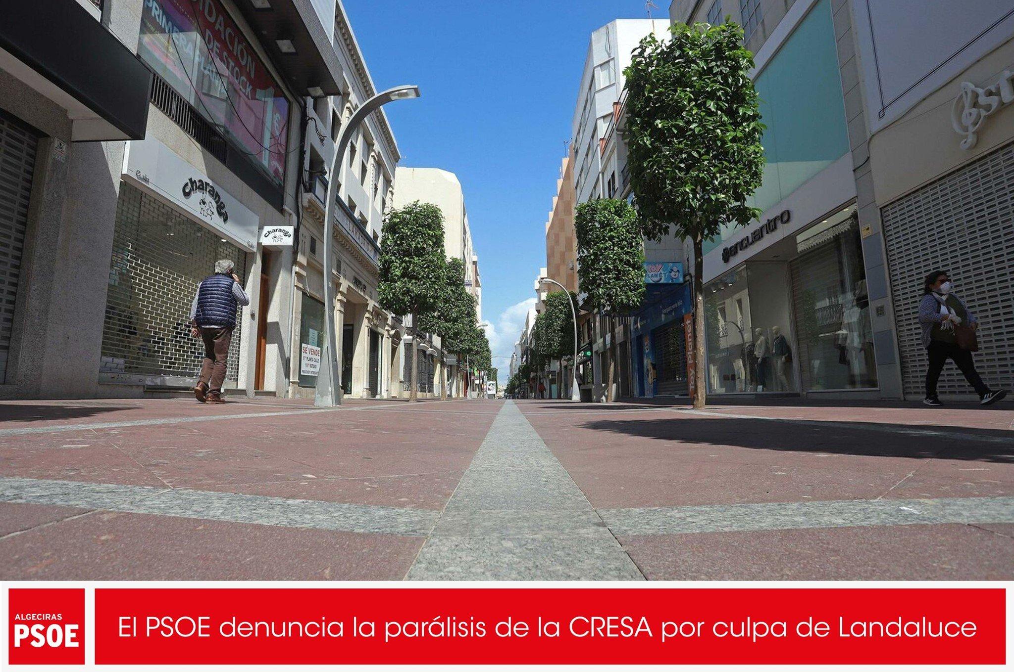 El PSOE denuncia la parálisis de la CRESA por culpa de Landaluce